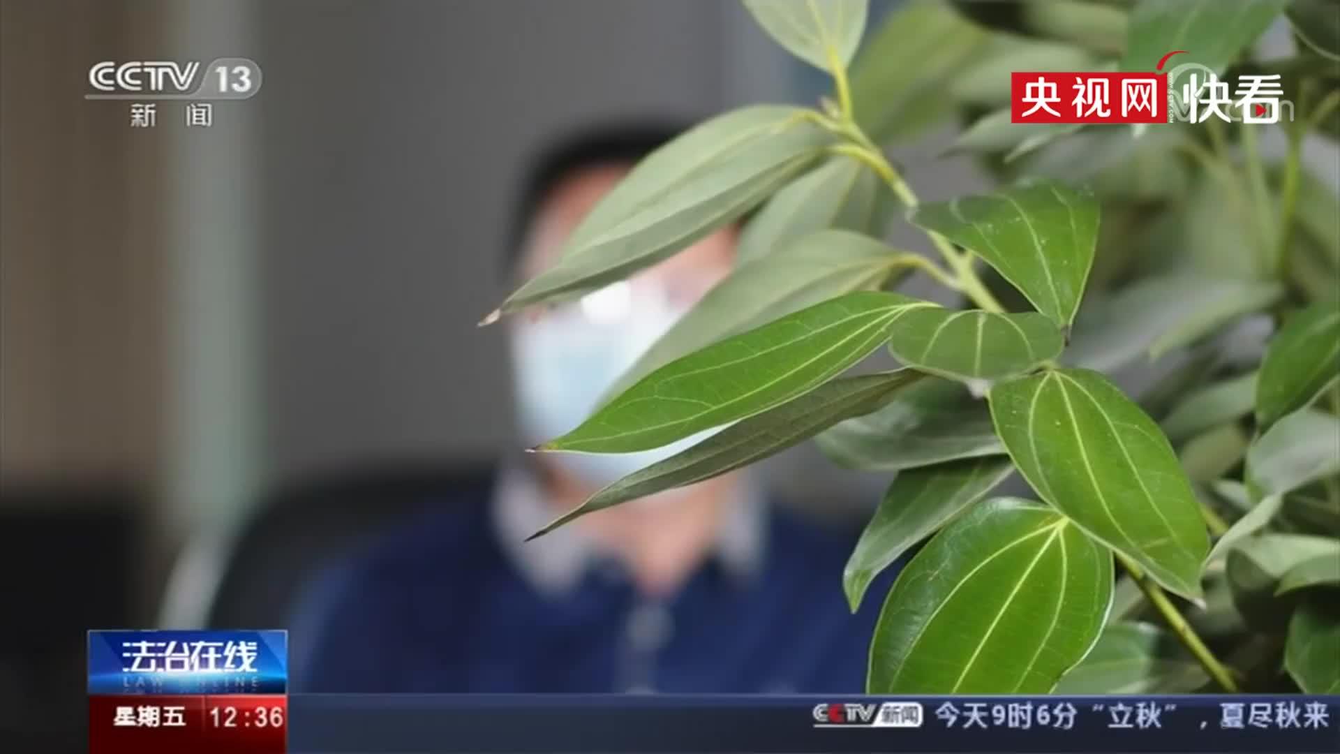 央视曝光网购游戏装备连环骗局